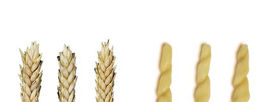Pasta Garofalo - Trofie