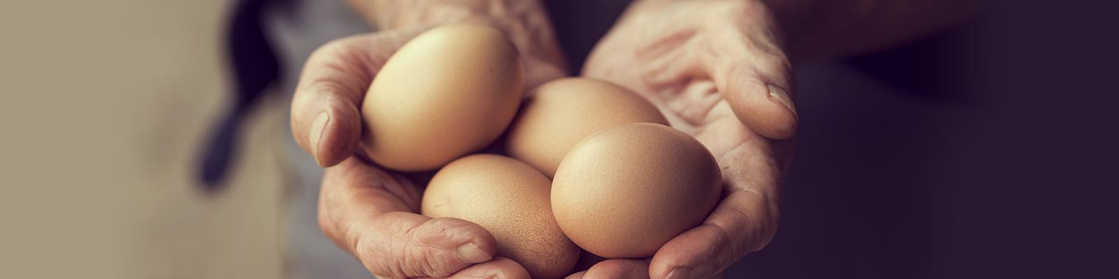 La Pasta con uova fresche di galline allevate a terra