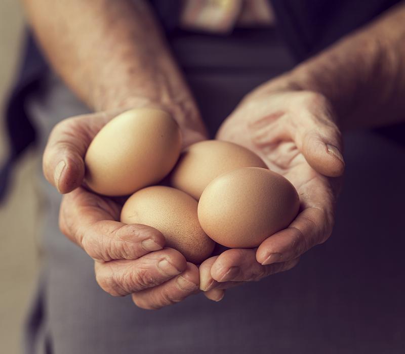 Pasta Garofalo - La Pasta con uova fresche di galline allevate a terra
