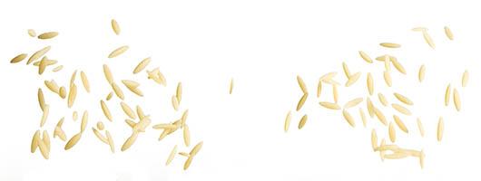 Pasta Garofalo - Orzo